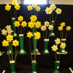 Class 4 Three blooms  from Div 1
