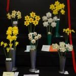 Six bloom class Winner Red Card