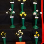 3 x 3 Miniatures Winner Red Card Sue Vinden
