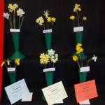 6 miniatures Winner Red Card Wendy Akers