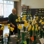 Daffodil Judge Steve Ryan