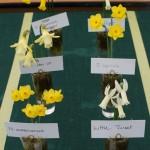 Winner 6 x 3 Miniatures Brian Duncan