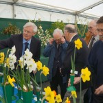 Chaos (only joking) Judging Best Blooms
