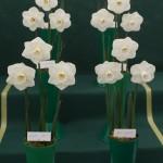Winner Guy Wilson Memorial Vase Richard Gillings